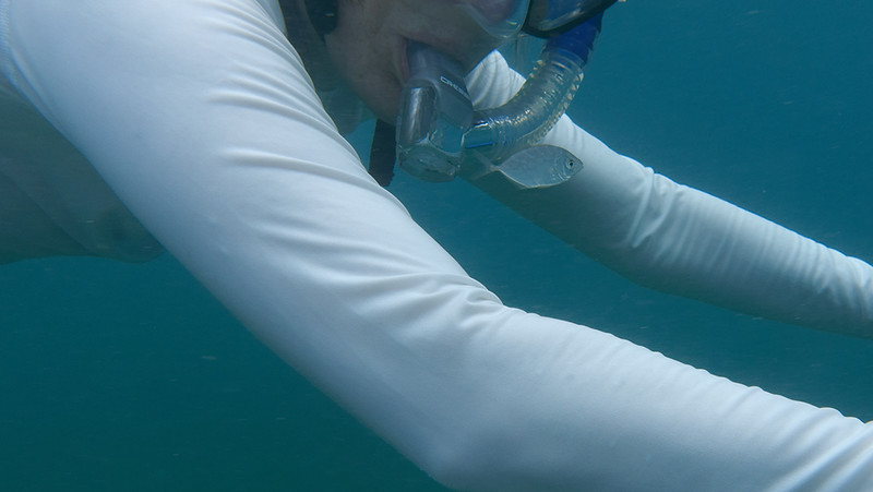 Snorkeling with my little fish friend.  Waterlemon Bay.