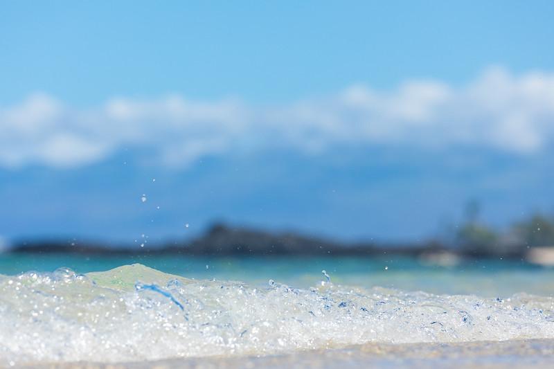 Travel_Hawaii_03052020_0225.jpg