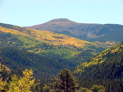 Carson National Forest (New Mexico)