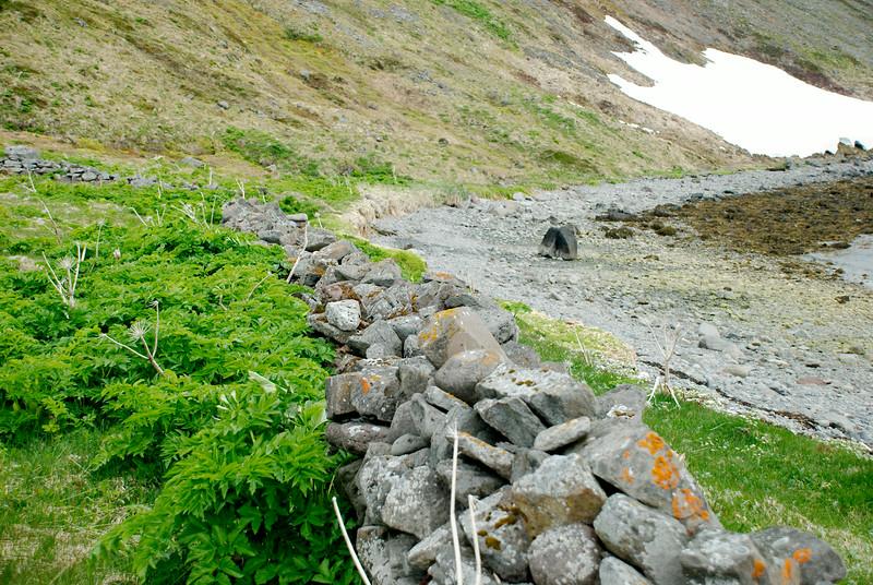 Vegghleðsla á Borðeyri