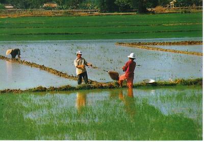 2004_04 Vietnam