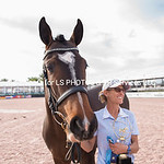 Photos by Lois Spatz at AES GRAND PRIX OF FLORIDA & STALLION GRADING at Global Dressage