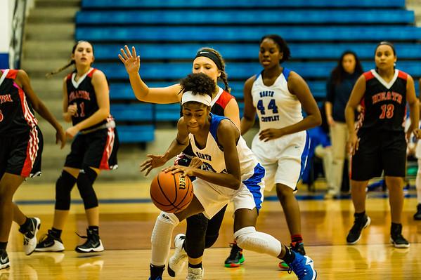 Basketball, 2016, 12-09-16, Lady Panthers,JV-13