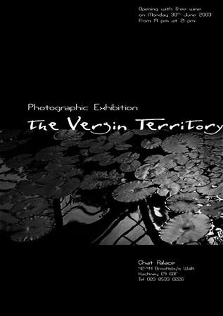 The Vergin Territory