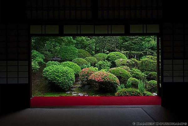 Anraku-ji Temple image copyright Damien Douxchamps