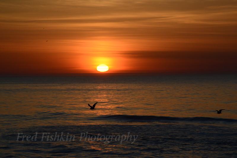 Sunrise 05_02_18.JPG