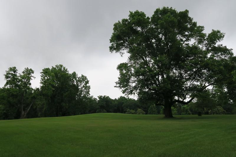 Dunlap Mound