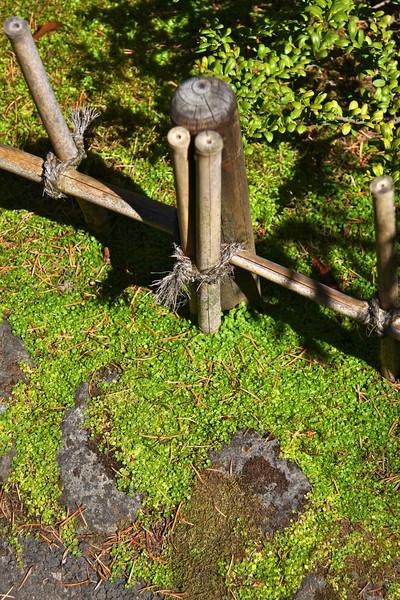 Portland Japanese Garden 6-3-11  1795.jpg