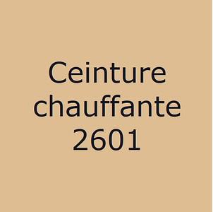 210126 Ceinture Chauffante