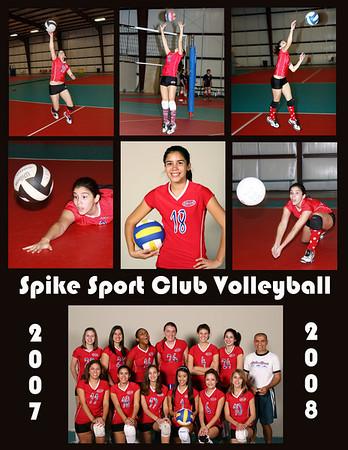 Volleyball Best