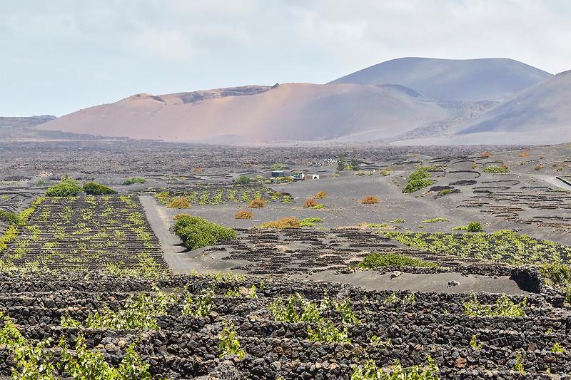 20180510 Fuerteventura img026.jpg
