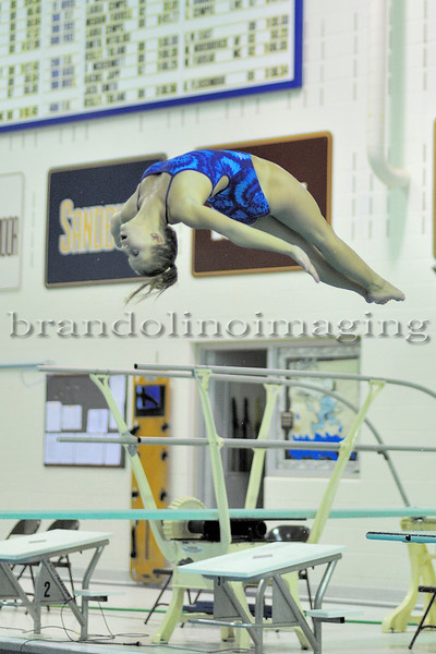 Lincoln-Way East Girls Diving (2010)
