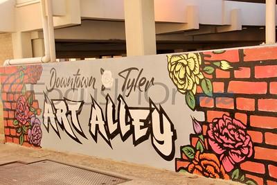 Art Alley in Tyler by Jim Bauer