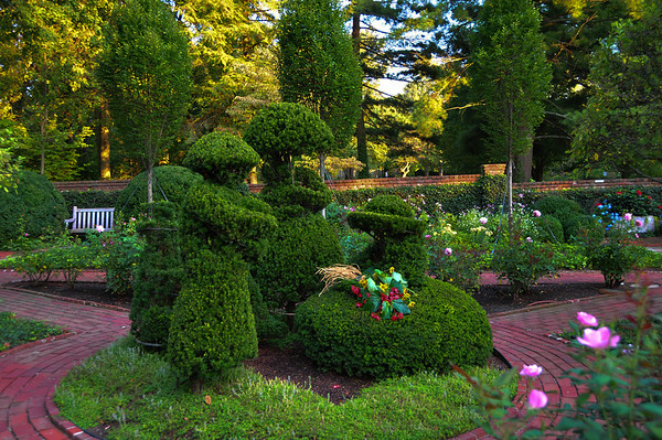 Ashland Garden Topiaries