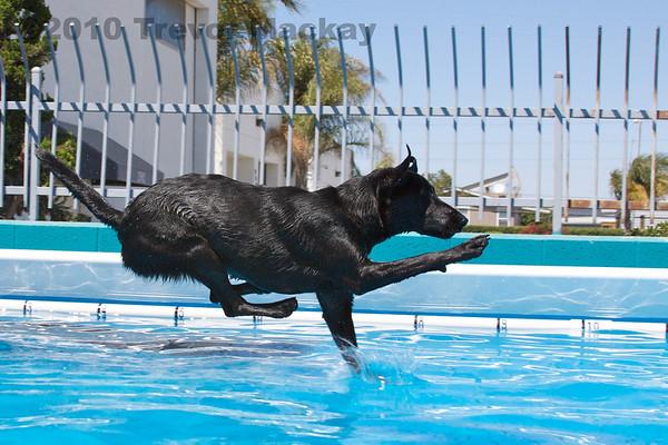 Pool - 8 Aug 2010