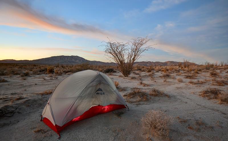 (2018 November 26) Anza-Borrego Desert State Park, California.