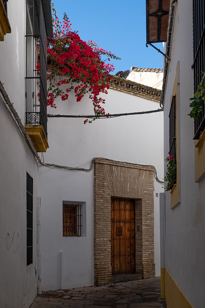 Andalucia-191118-870.jpg