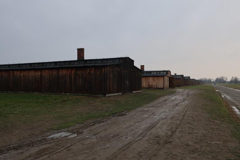 Auschwitz -Birkenau11.JPG
