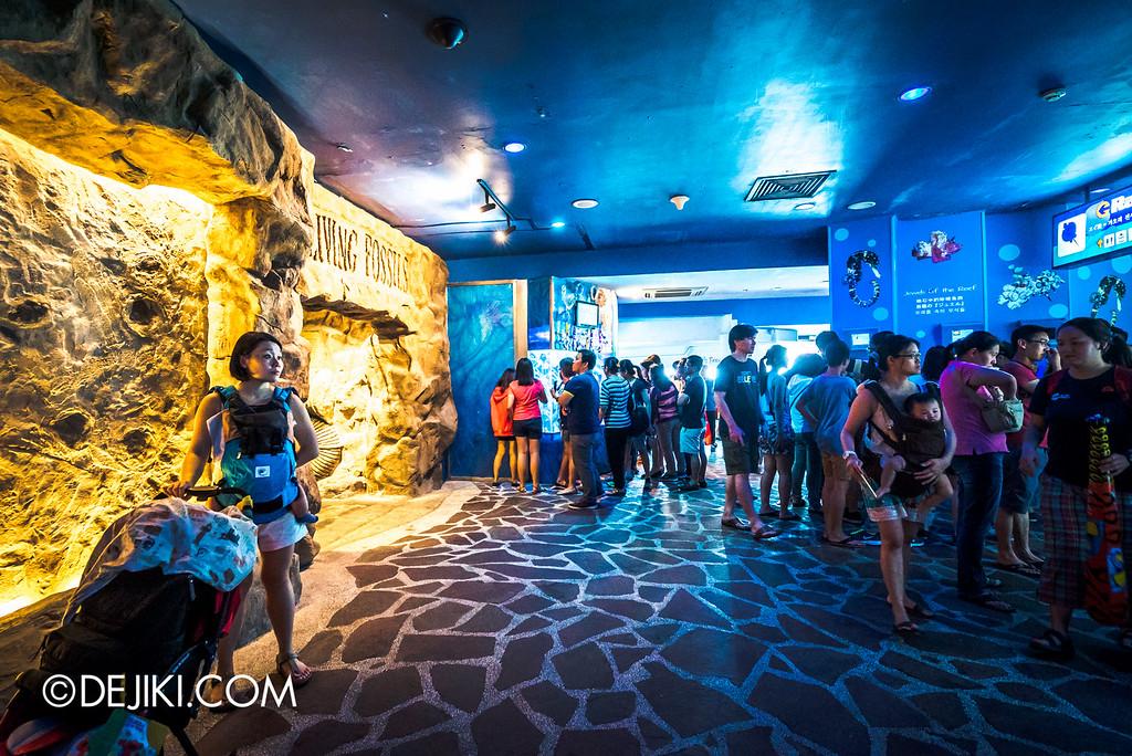 Underwater World Singapore - Level 1 Aquarium overview