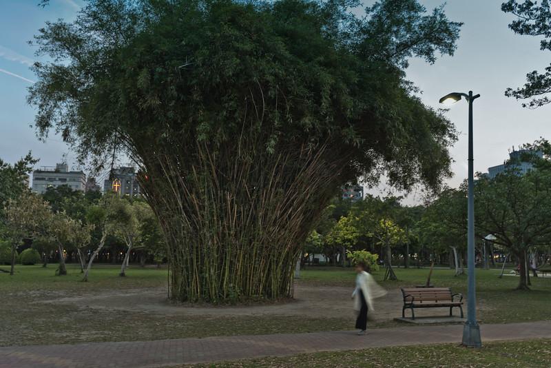 Da'an Park, Taipei, Taiwan