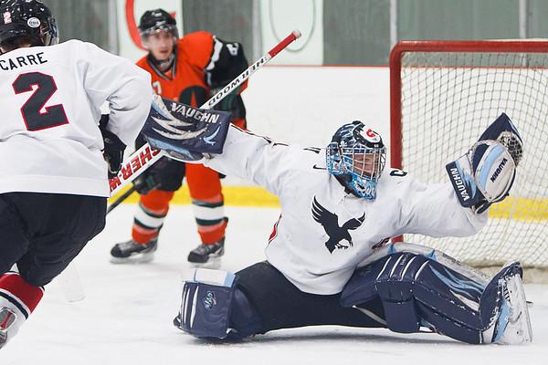 Carleton Ravens Mens Hockey