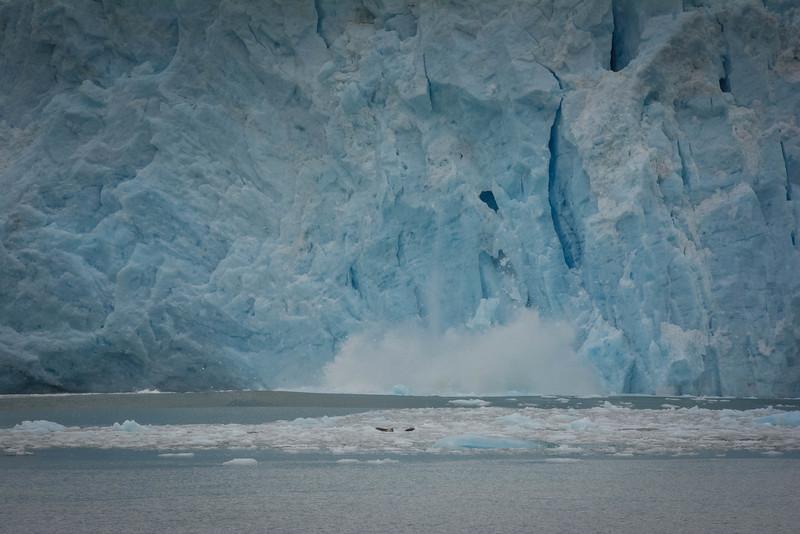 Kenai-Fjords-101.jpg