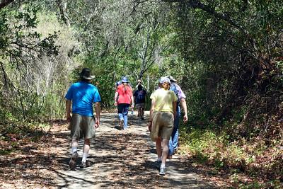 Limekiln Trail hike at Sierra Azul Open Space Prserve, July 2014