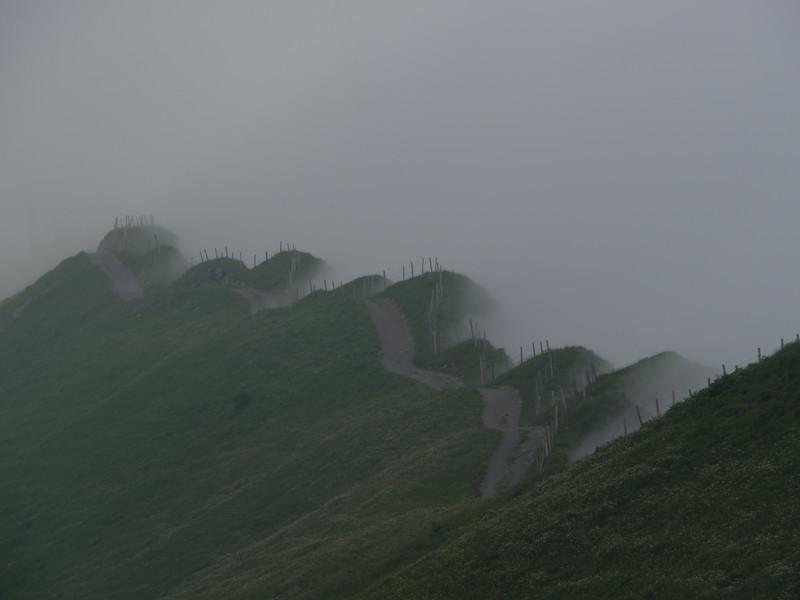 @RobAng 2013 / Bergspaziergang Hochybrig, Muotathal, Illgau, Kanton Schwyz, CHE, Schweiz, 1731 m ü/M, 2013/07/07 14:25:21