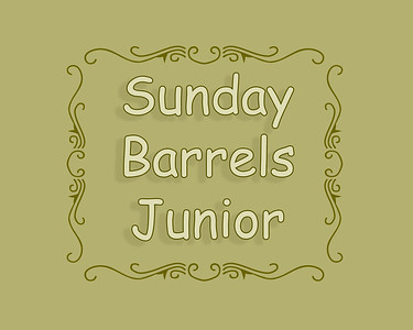 DEC LB 2018 Sun Barrel Racing Junior