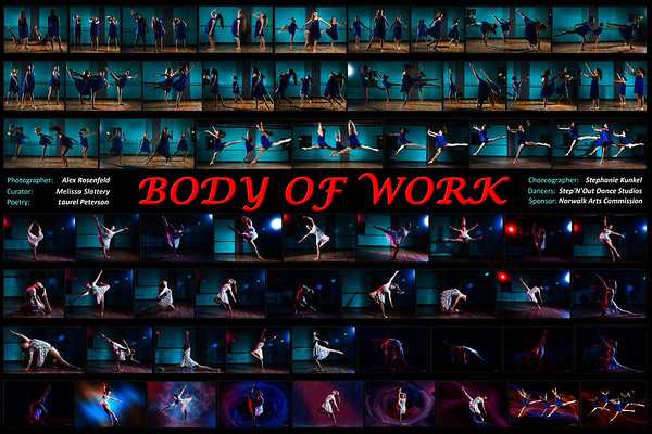 Body of Work Library