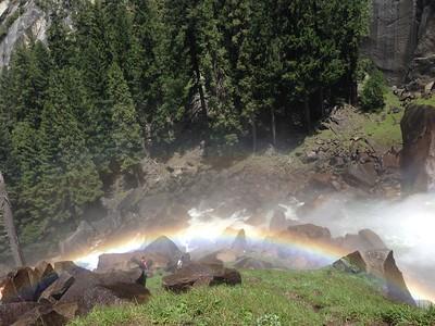 Yosemite Trips