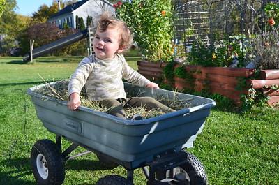 Pumpkins and Hay Rides