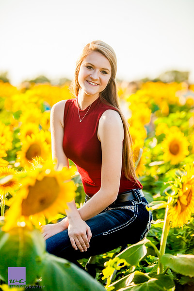 Sunflower Mini Session Weekend 1   September 6th, 2016   Lawrence, KS