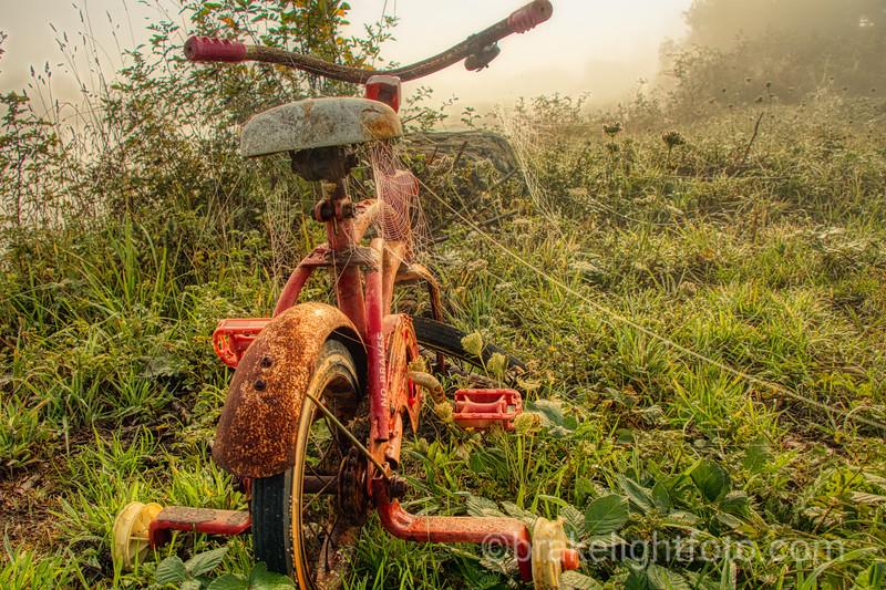Abaondoned Bike
