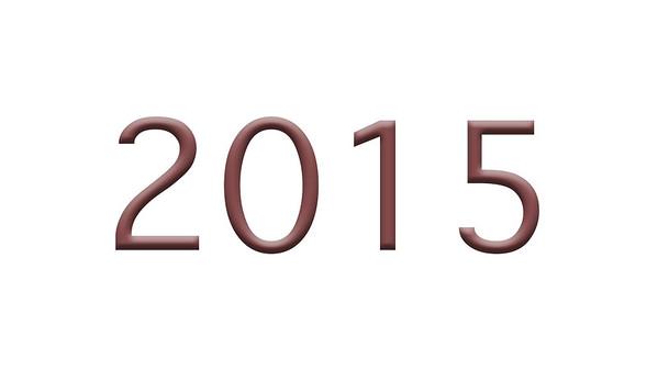 Jalsa Salana USA 2015