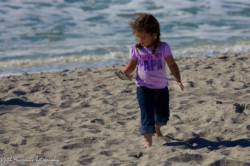 Sanibel Beach 2013_ 33.jpg