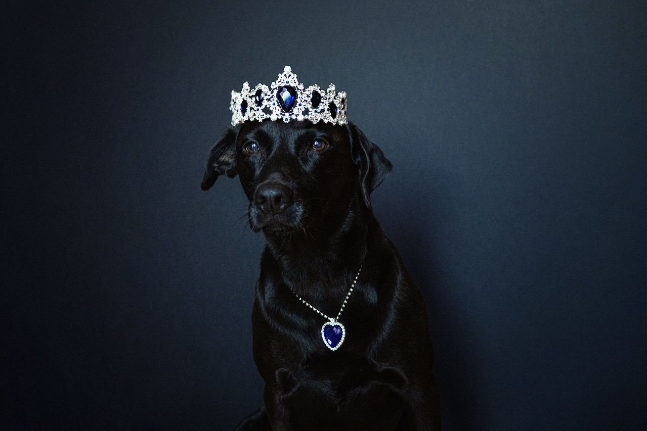 Princess Maui