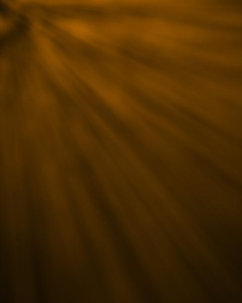 Rays Brown.jpg