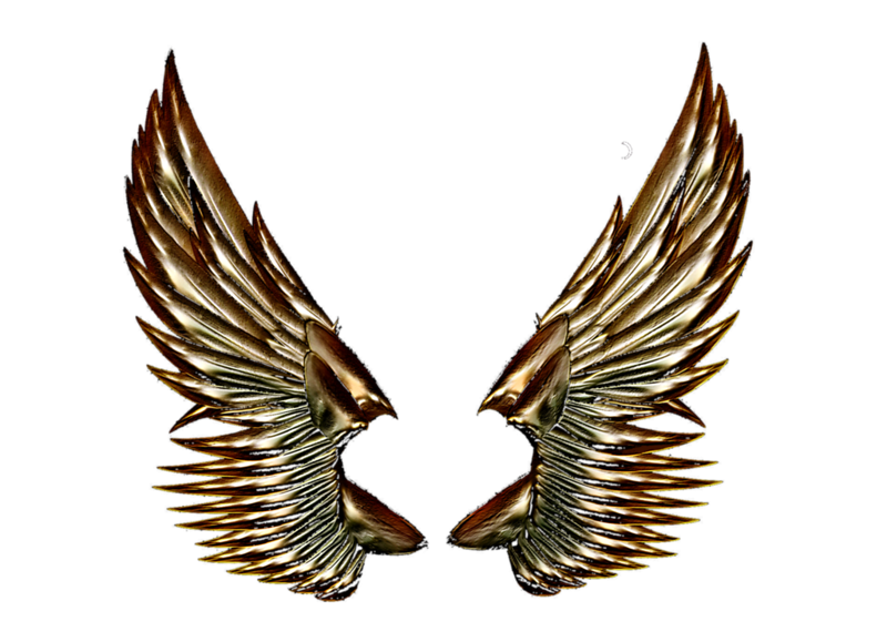gold_angel_wings_by_gorilla_ink.png