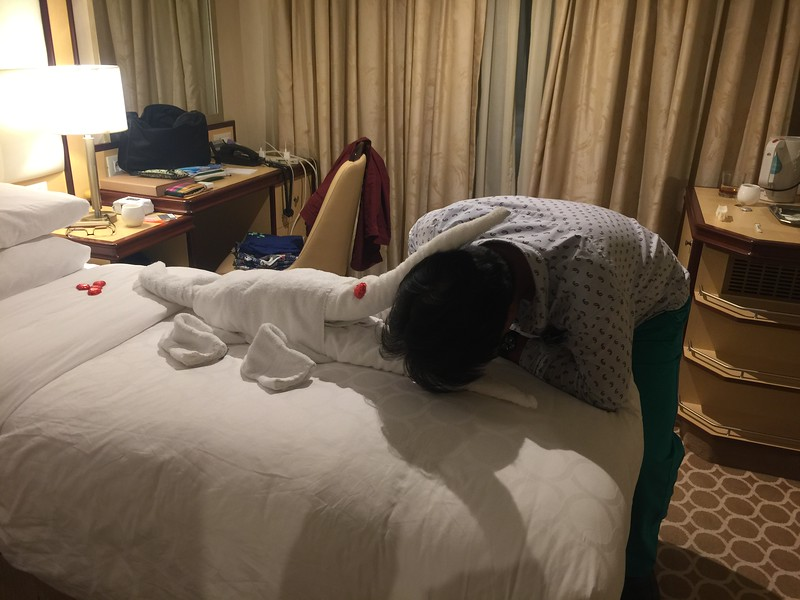 海上巡航類_客房服務送一隻咬人的鱷魚.JPG