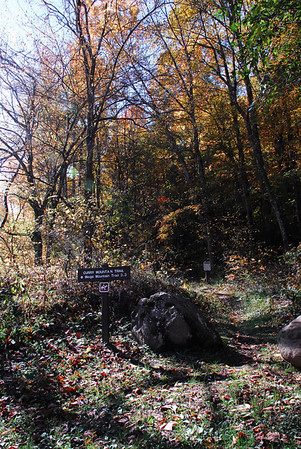 Curry Mountain Trail to Elkmont