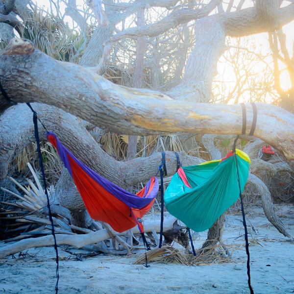 Driftwood-Beach-73.jpg