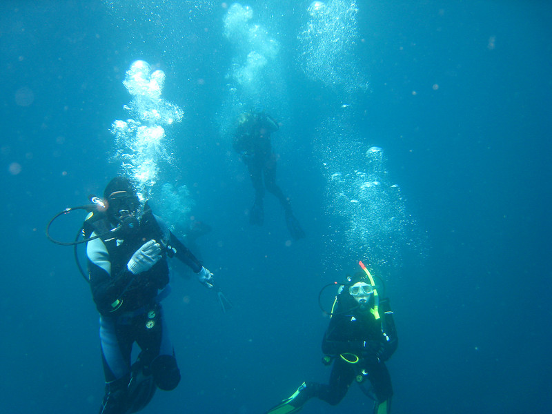 Diving in the Galapagos (345 of 392)