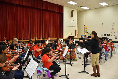 2017 Lakeland Strings and Youth Ensemble Spring Tour