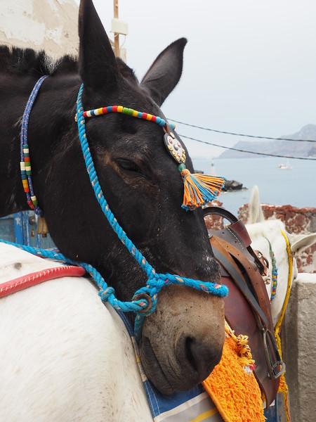 Santorini - 2-17560.jpg
