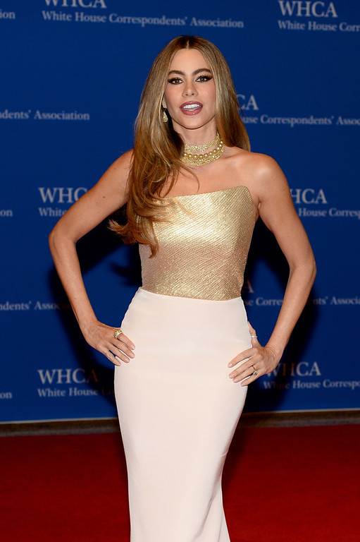 . Actress Sofia Vergara attends the 100th Annual White House Correspondents\' Association Dinner at the Washington Hilton on May 3, 2014 in Washington, DC.  (Photo by Dimitrios Kambouris/Getty Images)