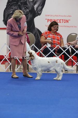 Puppy Dog 6-9 Months