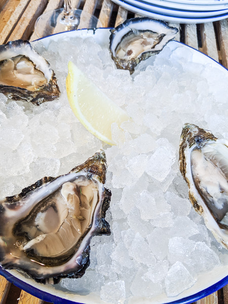 klaw seafood cafe oysters dublin-12.jpg