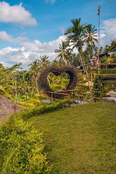Bali (197).jpg