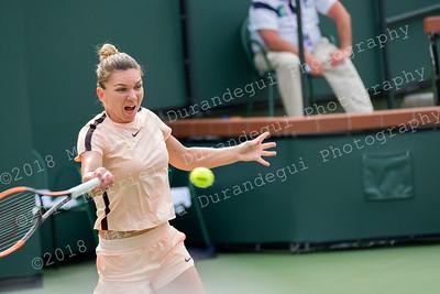 TENNIS (Professional Tournaments)